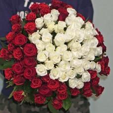 Букет 101 троянда середнього розміру червоного і білого кольору