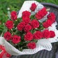 19 красных роз в упаковке